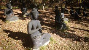 16 Buddhas